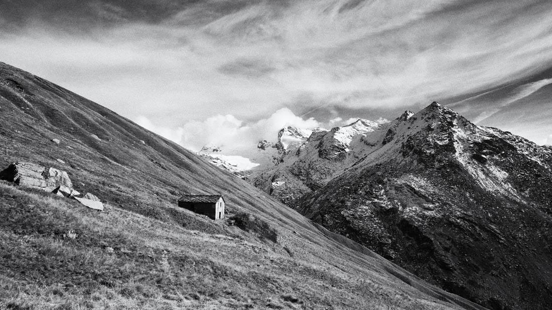 alpage vallonbrun