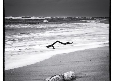 dans la vague