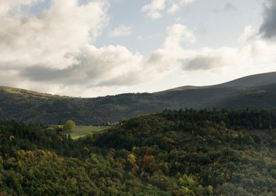 un peu des Vosges...