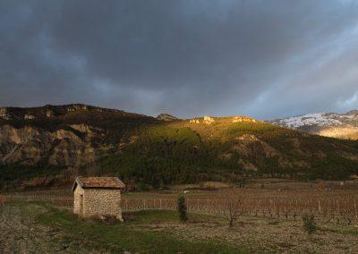 derniers rayons sur le vignoble à Châtillon